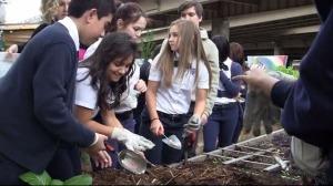 Uplift Luna scholars work in the Deep Ellum Urban Gardens.